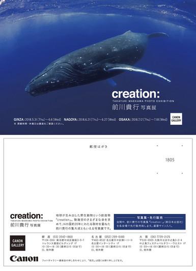 Creationdm